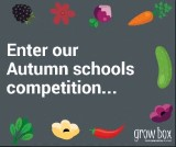 Growbox Autumn Schools Challenge