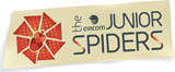 Eircom Junior Spiders