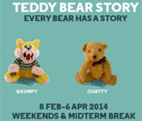 Teddy Bear Story