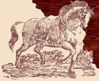 Corribdale Pony Show & Country Fair