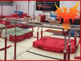 Phoenix Gymnastics Club