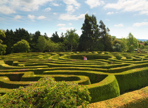 Greenan Farm, Museums Maze