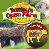 Rumleys Farm School Tours