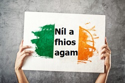 Irish language is supported but not actively used, report finds
