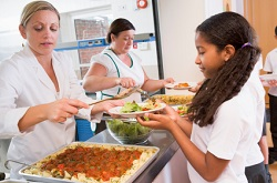 Green Party Plan to Feed All School Children