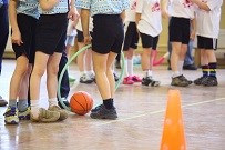 Irish Children Score a 'D' Grade in P.E.