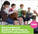 Irish Aid Primary Workshop
