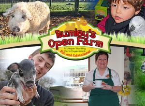 Rumleys Farm School Tours
