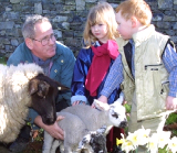 Bunratty Easter Activity Camp
