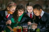 Discover Primary Science & Maths
