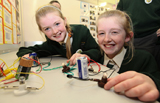 The RDS Primary Science Fair
