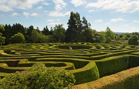 Greenan Farm, Museums and Maze