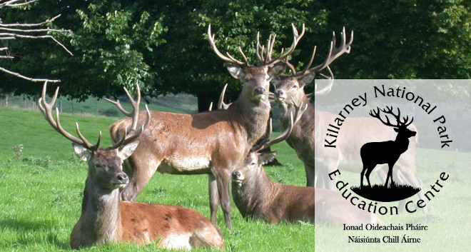 Killarney National Park Education Centre Schooldays Ie