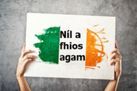 Consultation on exemptions from Irish in schools