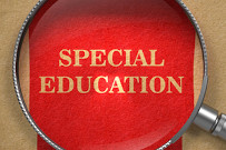 Priorities to reform special education provision
