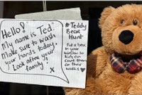 Teddies in the Window - Bear Hunt for Children